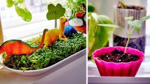 Le jardinage, ludique et pédagogique