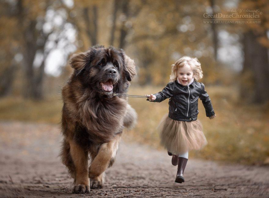 Un chien pour être en forme