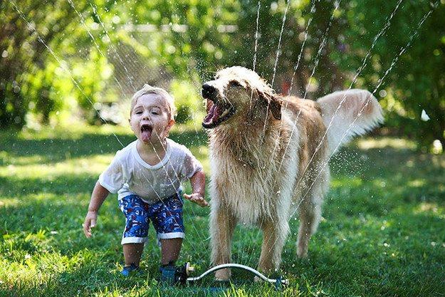Les enfants et les chiens : une grande histoire d'amour